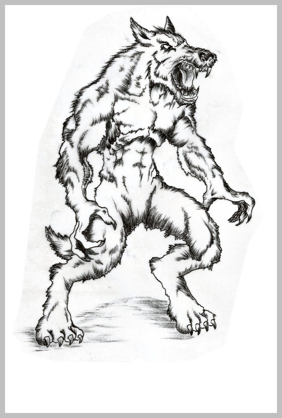 Loup garou pour site
