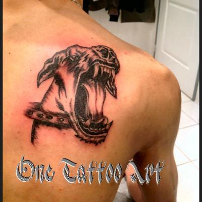 pitbull one